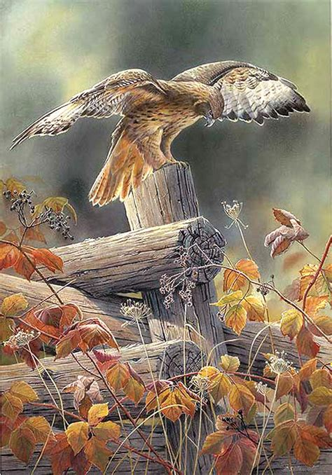 Red TaiLed Hawk Cross by LONE WOLF CROSS-STITCH PATTERNS