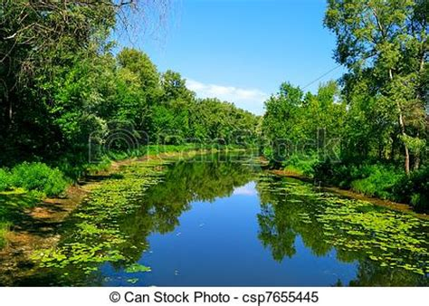 River and green trees with reflection in water