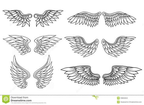 Set Of Eagle Or Angel Wings Stock Vector - Image: 33855844