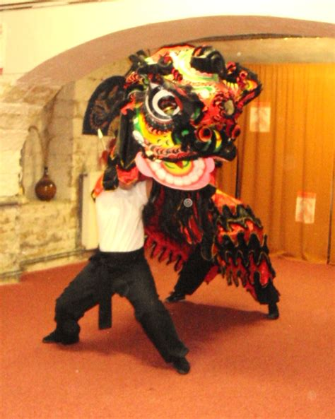 Czech Kung Fu students to perform Lion Dance in