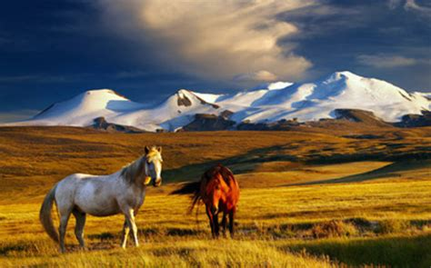 Altai Mountains (Siberian District) - 2020 All You Need to