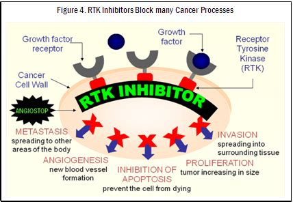 The Steps For Early Detection And Prevention Of Cancer